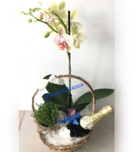 Cosuri cu flori si aranjamente florale realizate de Floraria Hanca, situata in judetul Cluj, comuna Florești