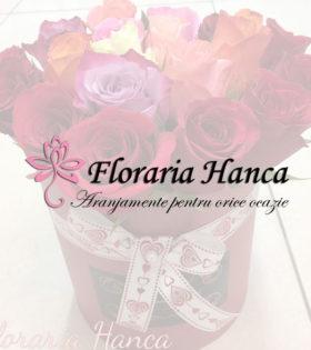 Cutii cu trandafiri realizate de Floraria Hanca, situata in judetul Cluj, comuna Floresti