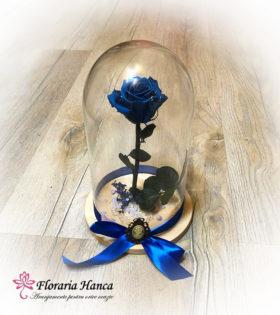 Trandafir criogenat albastru – pastrat in cupola de sticla.