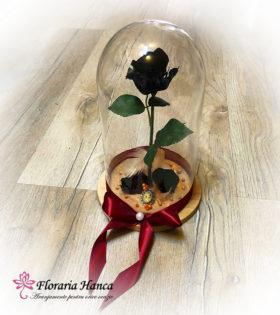 Trandafir criogenat negru in cupola de sticla livrat la domiciliu de Floraria Hanca