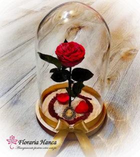 Trandafir criogenat rosu in cupola de sticla, model unicat si nemuritor. Trandafir criogenat cu o durata de viata de 25 ani pastrat in conditii optime