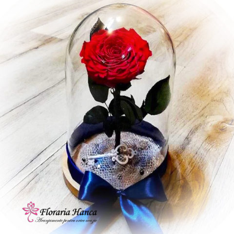 trandafir-criogenat-unicat