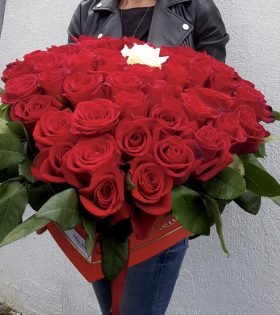 "Cutie "" marriageproposal"" 51 Trandafiri Ecuador in cutie rosie inima."